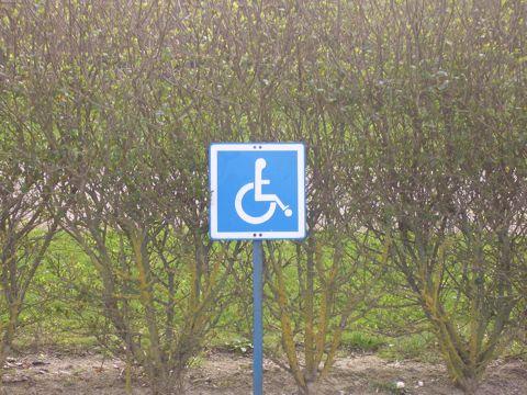 handicapes-foot.jpg